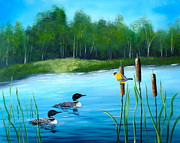 Loons In A Lake Print by Kevin  Brown