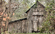 Barn In The Woods Photos - Lost and Found by JC Findley