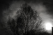 Winter Night Photo Metal Prints - Lost in moments Metal Print by Taylan Soyturk