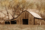 Old Barns Posters - Lost In The Past Poster by Betty LaRue