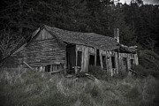 Old Houses Metal Prints - Lost in the woods Metal Print by Garry Gay