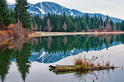 Mountain Reflection Lake Summit Mirror Framed Prints - Lost Lake Log Framed Print by James Wheeler