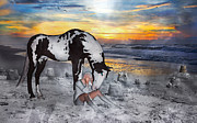 Paint Horse Mixed Media Posters - Lost Love Poster by East Coast Barrier Islands Betsy A Cutler