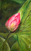 Lotus Bud Paintings - Lotus bud by Onkar Kushwaha