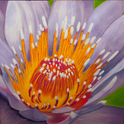 Print On Canvas Pastels Posters - Lotus Poster by Dana Kern