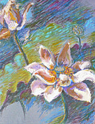 Blue Flowers Pastels - Lotus by Ellen Dreibelbis