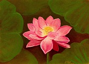 Anastasiya Malakhova - Lotus Flower