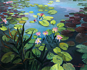 Lotus Pond Paintings - Lotus Flowers  by Kiril Stanchev