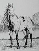 Horse Drawing Mixed Media Prints - Loud Paint Horses Print by Cheryl Poland
