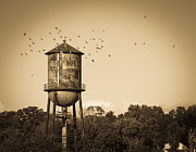 Tennessee Landmark Prints - Loudon Water Tower Print by Melinda Fawver