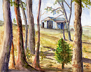 Hand Painted Framed Prints - Louisiana Barn Through the Trees Framed Print by Lenora  De Lude