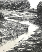 Waterscape Drawings Prints - Louisiana Bayou Print by Garry McMichael