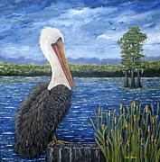 Suzanne Theis - Louisiana Brown Pelican