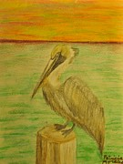 Pelican Drawings Metal Prints - Louisiana state bird Metal Print by Patricia Morales