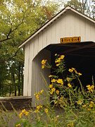 Bucolic Scenes Photos - Loux Bridge and Tickseed in September by Anna Lisa Yoder