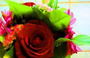 Claire Bull - Love Bouquet