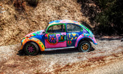 Cindy Nunn Art - Love Bug by Cindy Nunn