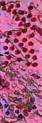 Love Grows Print by Donna Blackhall