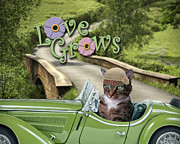 Kathy Tarochione - Love Grows
