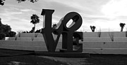 C H Apperson - Love in Scottsdale 2 BW