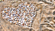 Seashell Art Photo Prints - Love in the Sand Print by Colleen Kammerer