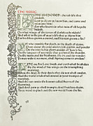 Calligraphy Drawings Prints - Love is Enough Print by William Morris
