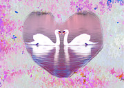 Swans Digital Art - Love is Everywhere by Bill Cannon