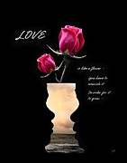 Proverbs Prints - Love is like a flower Print by Gerlinde Keating - Keating Associates Inc