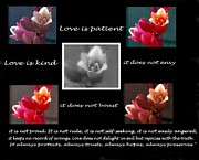 Love Is Patient Print by Ruth Jolly