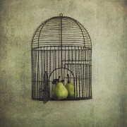 Bird Cage Framed Prints - Love is the key Framed Print by Priska Wettstein