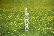 Heartfelt Framed Prints - Love Is Framed Print by Tim Gainey