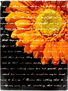 Daisy Art - Love Letters by Edward Fielding