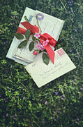 Sandra Cunningham - Love letters with red satin ribbon in the grass