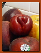 Express Way Photos - Love Nectarine by Sanford