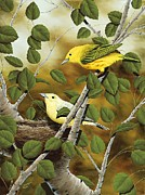 Yellow Warbler Framed Prints - Love Nest Framed Print by Rick Bainbridge