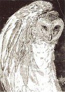 Love Owl Print by George Harrison