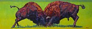 Bison Art - Love Rights Iii by Patricia A Griffin