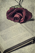 Book Flower Prints - Love Stories Print by Joana Kruse
