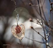 Michelle Wiarda - Love Survives