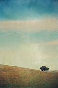 Oak Trees Prints - Love Your Own Company Print by Laurie Search