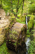 Wood Mill Photos - Lovely old mill wheel in small river by Matthias Hauser