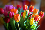 Tulips Art - Lovely Tulips by Lutz Baar