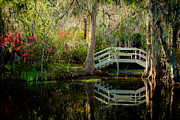 Pond Nature Landscape Framed Prints - Lovey Morning at the Garden Framed Print by Iris Greenwell