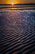 Olympic Mountain Posters - Low Tide Ripples Poster by Inge Johnsson