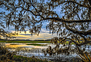 Dennis Sabo - Lowcountry Sunrise