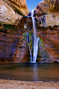 Grand Staircase Escalante Posters - Lower Falls of Calf Creek Poster by Carolyn Rauh