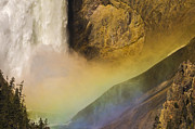 Grand Canyon Of The Yellowstone Posters - Lower Falls Rainbow - Yellowstone Poster by Sandra Bronstein
