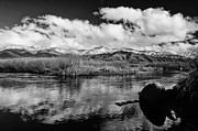 River. Clouds Posters - Lower Owens River Poster by Cat Connor