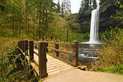Jamie Pham Metal Prints - Lower South Waterfall with footbridge in Oregon Columbia River Gorge. Metal Print by Jamie Pham