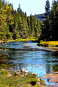 Lynn Bawden - Lower Truckee River